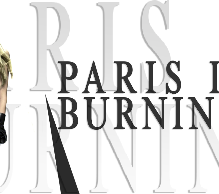 Paris Hilton Blog post banner